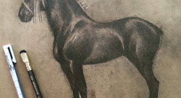 A study from a photograph of a black Percheron horse.